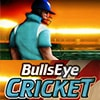 BullsEye Cricket Game - Cricket Games