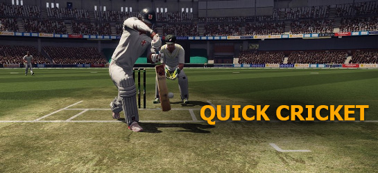 Quick Cricket Game - Sports Games