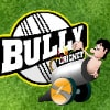 Bully Cricket Game - Sports Games