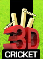 3D Cricket Game
